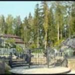 Ворота и калитки – это визитная карточка хозяина дома