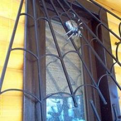 Металлопластиковые окна тоже нуждаются в решетках